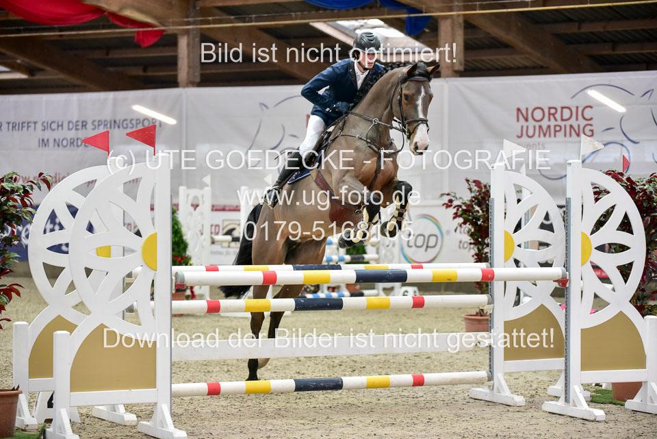 Prfg-Nr-3---Springpferde-L-_081.jpg