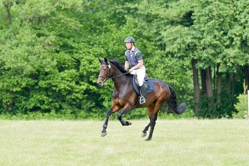 SH-Landeschampionat  der 6 j. Geländepferde  Kl L   090621 - SH Landeschamp GPF L_006
